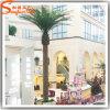 2015 China Manufacturer Decorative Artificial Palm Plants Trees Wholesale