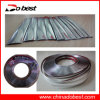 Decorative Car Door Rubber Strip