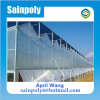 Easily Installed PC-Sheet Multi-Span Greenhouse for Strawberry
