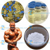 Anabolic Raw Steroid Hormone Tpp Testosterone Phenylpropionate for Lean Muscle