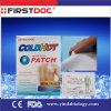 Medical Patch, Capsicum Plaster/Pain Relief Patch/Pain Killer