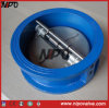 Cast Iron Wafer Type Dual Plate Swing Check Valve