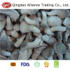 Top Quality Whole Oyster Mushroom