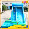 Coco Blue Inflatable Water Slide (AQ1076)