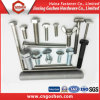 Fastener Hex Bolt, Flange Bolt, Carriage Bolt, Wheel Bolt, Wing Bolt, Eye Bolt