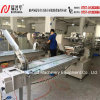 Zp100 Pillow Type Packer Machine for Biscuits/Cookies/ Candy