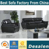 Black Genuine Leather Sofa in Office and Living Room Furniture (01)