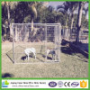 New Products Heavy Duty 6X10X6 Good Quality Wholesale Dog Kennels