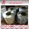 Prime Quality Hot Rolled Stainless Steel Coil