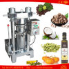 Walnut Sesame Almond Camellia Pumpkin Coconut Oil Press Machine