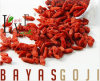 Goji Berries--EU Regulation
