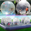 Human Inflatable Walking on Water Ball, Pool Aqua Sphere Bubble Balloon.