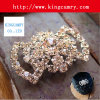 Fashion Decoration Rhinestone Buckle for Shoe or Handbag