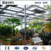 High Quality Single-Layer Multi-Span Film Greenhouse with Gable Roof