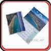 Promotional Calendar Factory Metal Clip Wall Calendar Printing