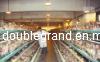 2012 Automatic Control Galvanizing Poultry House (DG6-017)