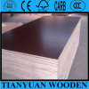 Brown Second-Hand Construction Plywood / Construction Plywood