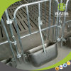 Welcomed by Modern Pig Farm Equipment Gestation Stall