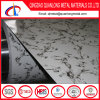 Color Coated Steel Coil with Marble Pattern Print
