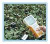 Soil Moisture Meter or Soil Three Parameters Tester