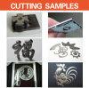 1000W Fiber Laser Cutting Machine Made in China
