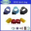 Anti-Allergic RFID Bird Feet Ring for Bird ID Tracking