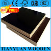 Black/Brown Construction Film Faced Plywood