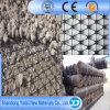 Best Sell Polypropylene Biaxial Geogrid Price
