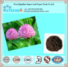 Red Clover Extract 8%-40% Isoflavones