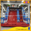 Red Tiger Theme Inflatable Slide for Amusement Park (AQ924-3)