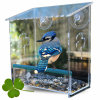 Factory Wholesale Hanging Acrylic Bird Feeder