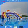 Inflatable Water Park Slide and Pool for Sale