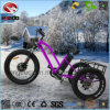 Fat Tire 3 Wheel 500W Electric Tricycle with LCD Display