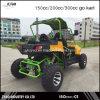 2 Seater Go Kart
