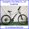 Electric Mountain Bicycle with Hidden Battery