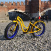 48V 500W Fat Tire Electric Bike for Lady