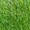 Synthetic Turf, Thickness Landscaping Grass Cushion Performance