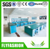 Chemistry Laboratory Equipment Lab Table for Wholesale (LT-06)