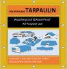 PE Tarpaulin Poly Tarp with PP Rope and Aluminium Eyelet