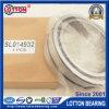 Manufacturing Bearing Cylindrical Roller Bearing (SL014932)