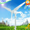 New Design 200W Wind Turbine Generator Include Wind Rotor+Pm Generator+Flange+Controller+Solar Panel+LED Street Lamp