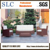 Outdoor Sofa Set/Commercial Sectional Sofa/Sofa Selection (SC-B1001)