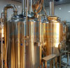 Commercial Beer Brewery Equipment 2000 Liter Used Brewery (ACE-FJG-Z9)