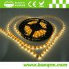 LED Strip Light SMD5050 300LEDs/5m/Reel
