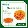100% Natural Plant Extract Marigold Flower Extract Lutein