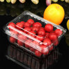 APET Clear Transparent Plastic Packing Box for Cherry Tomato & Oranges