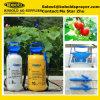 10L Pressure Sprayer, Plastic Hand Sprayer