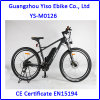 Electric Carbon Fiber Bike with Lithium Battery