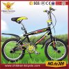 MTB Kid Bike for 5-10 Years with Alloy Rim