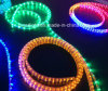 SMD LED Rope Light for Holiday Decoration